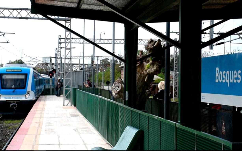 Otro ramal del tren Roca  avanza con las obras electrificación
