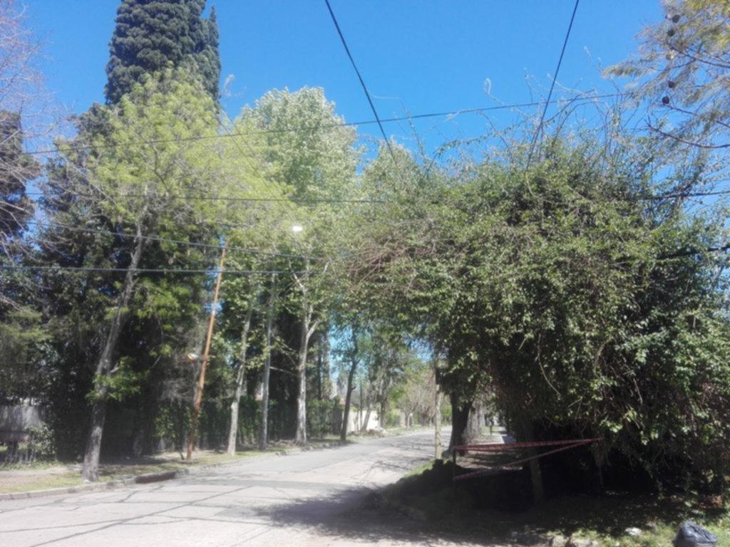 Vecinos reclaman por el vandalismo en calle Pellegrini
