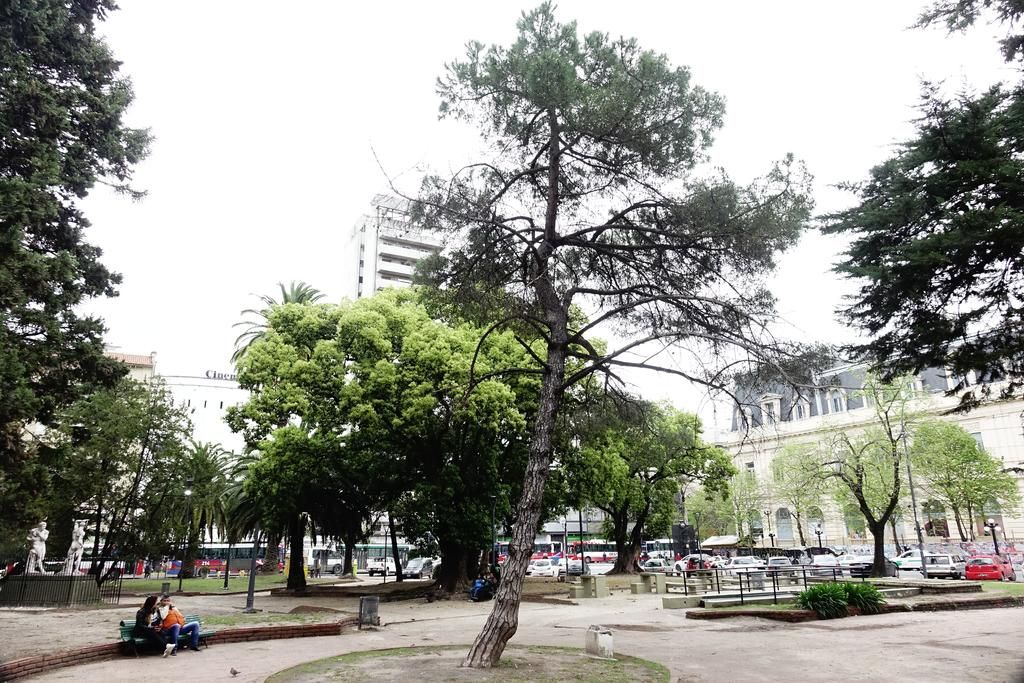 Un jirón de historia argentina, descuidado y abandonado a su suerte en la Plaza San Martín