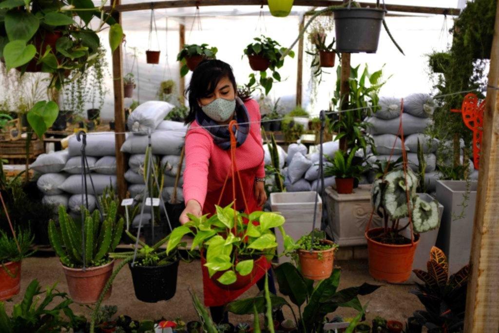 Vida en verde: la jardinería está de moda por el efecto pandemia