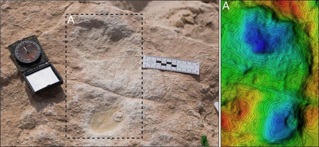 La ruta humana: encuentran huellas de hace 120.000 años en un lago de Arabia