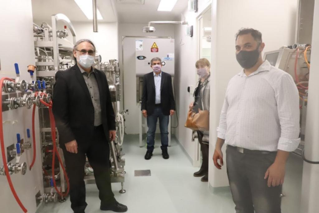 Consiguieron neutralizar el nuevo coronavirus con anticuerpos de llamas
