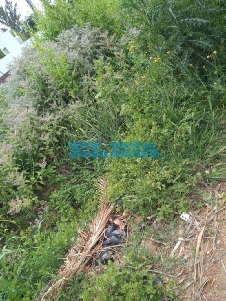 """Malestar por el estado de """"abandono"""" de las zanjas en Villa Elisa"""