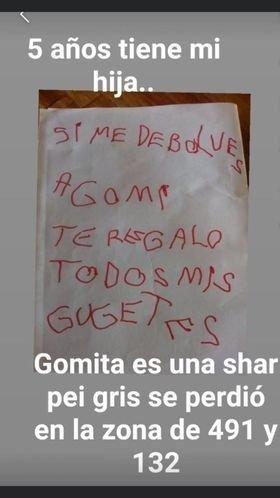 """""""Si me devolvés a Gomita te regalo todos mis juguetes"""": el conmovedor mensaje de una nena que busca a su perrita"""