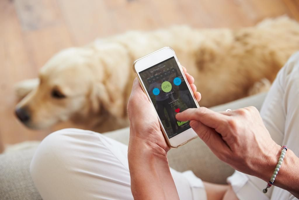 Las aplicaciones del celular, al servicio de nuestra mascota