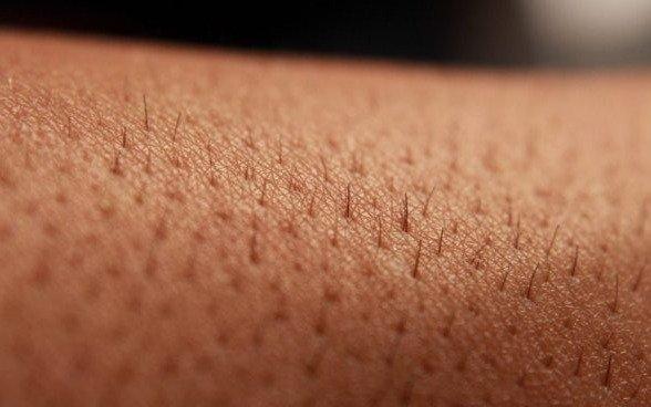 """Descubren que la piel envejece porque sus células se """"olvidan"""" de lo que son"""