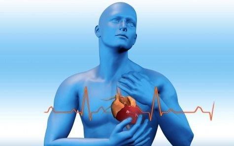 La importancia de la vida sana para prevenir males cardíacos
