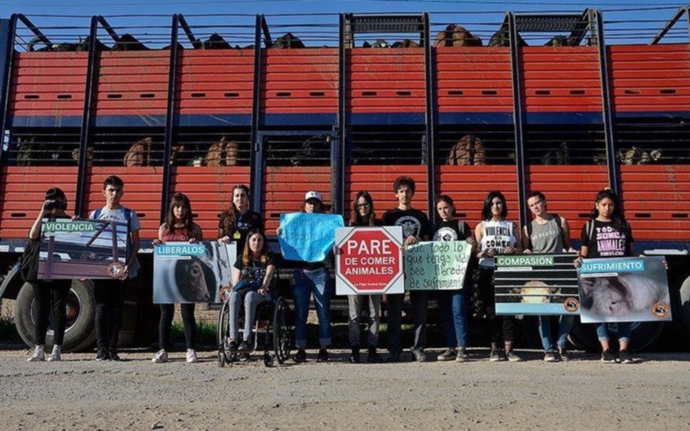 Antiespecistas: crece en La Plata el activismo por la defensa de los animales