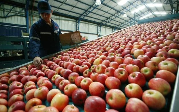 La brecha de precios entre el productor agropecuario y el consumidor bajó 1% en octubre