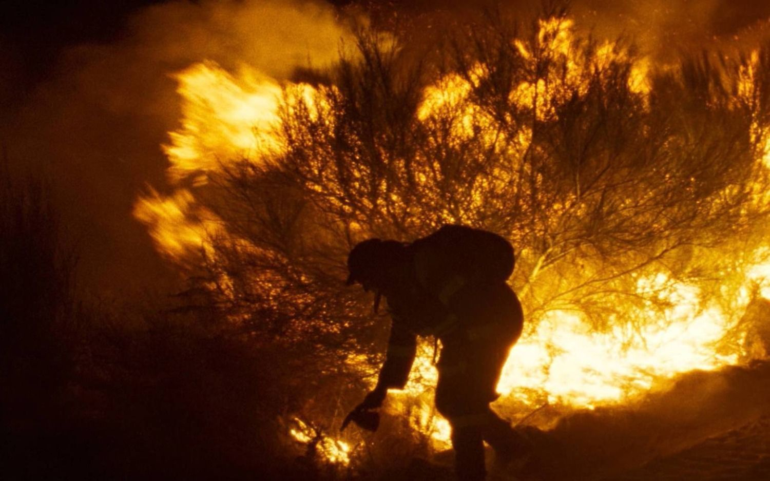 """""""O que arde"""" y """"Scattered Night"""""""