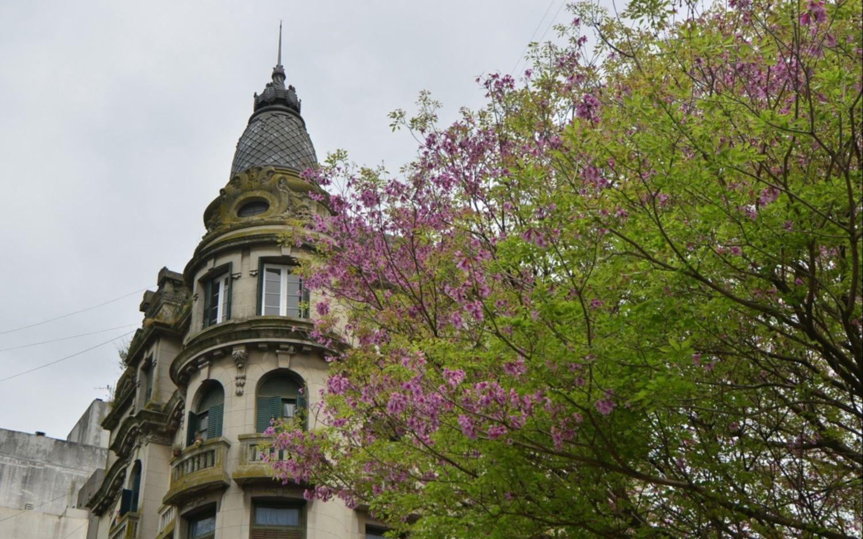 Volvieron las nubes y la primavera se escondió