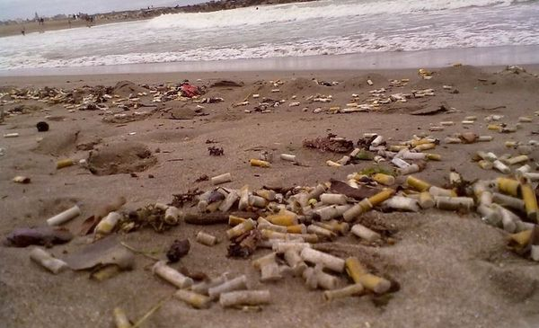 """Chau pucho en la arena de Pinamar: una ordenanza declara a las playas """"libre de humo"""" - Información General - Diario El Dia. www.eldia.com"""