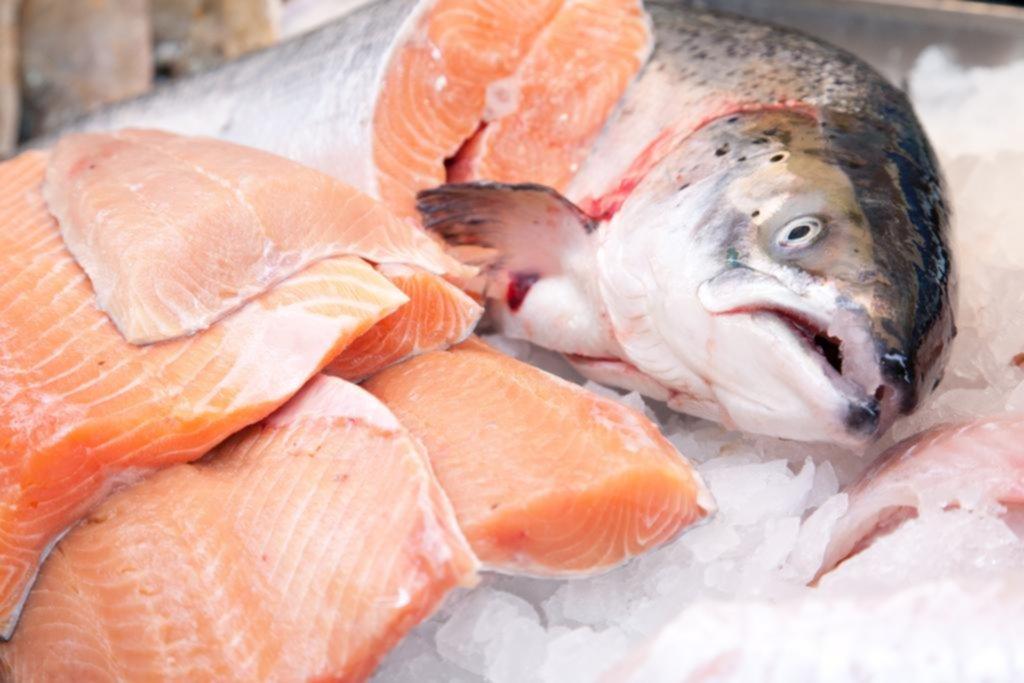 Salmón, caballa y cía.: Por qué es tan sano comer pescado regularmente