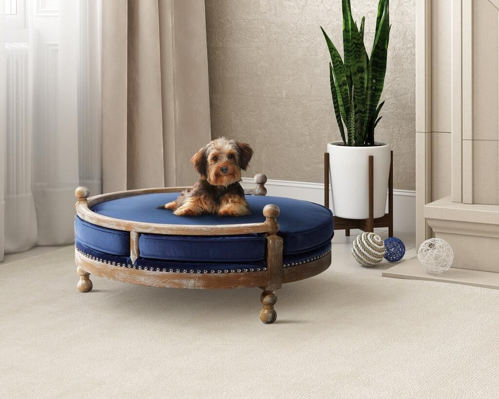 """Muebles de lujo para los """"nuevos hijos"""": las mascotas"""