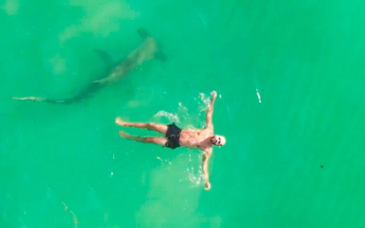¡De película! Un drone captó el momento justo en el que un tiburón rodeó a un nadador distraído