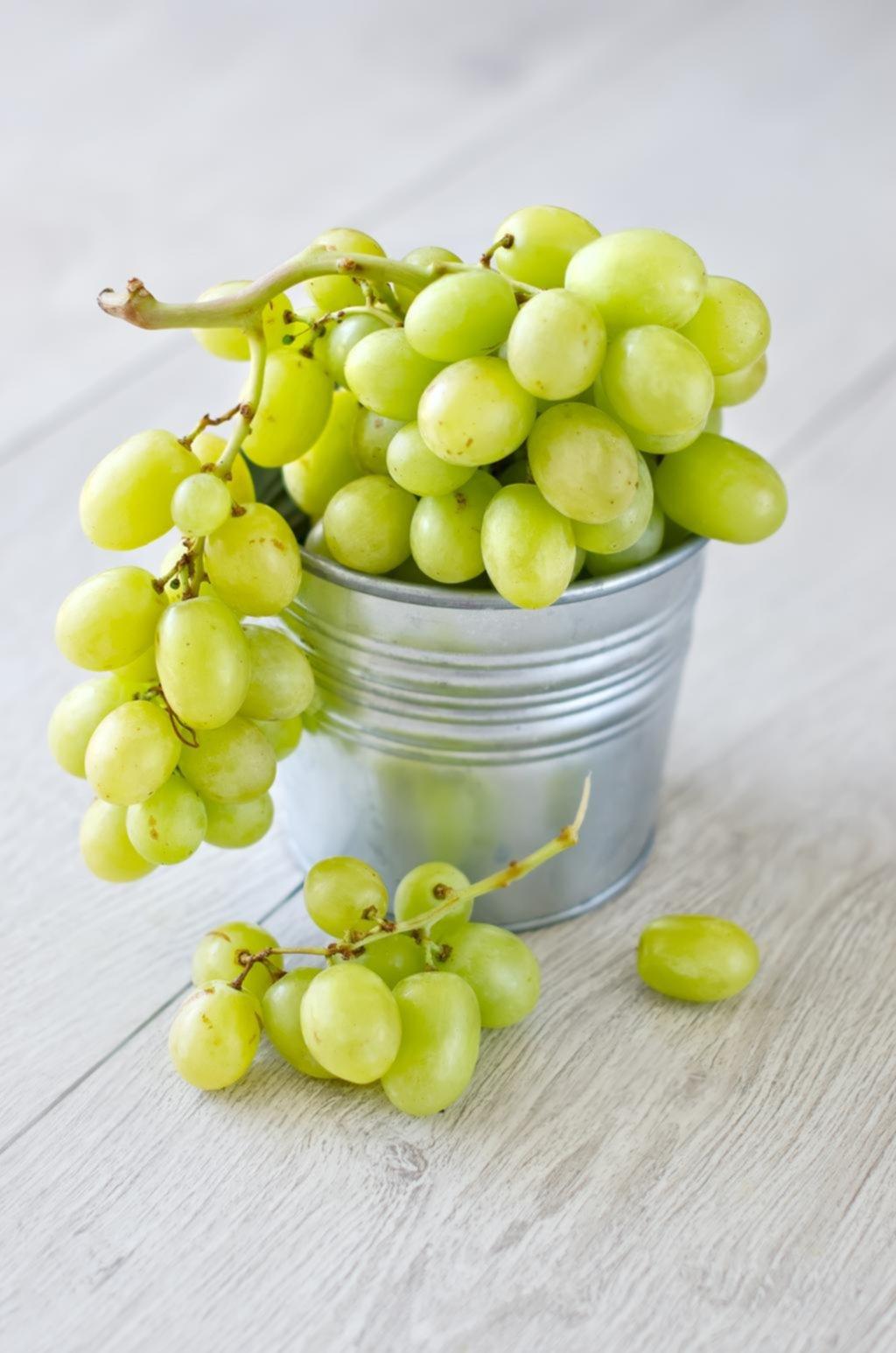 Viognier: una uva que el consumidor desconoce pero tiene sus adeptos