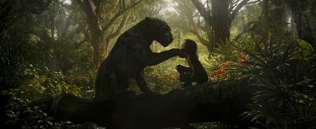 """Mowgli"": bienvenidos a la jungla"