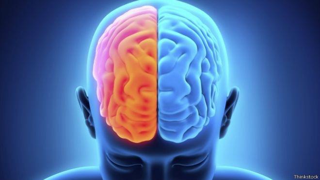 Descubren conexiones neuronales en personas que viven sólo con medio cerebro
