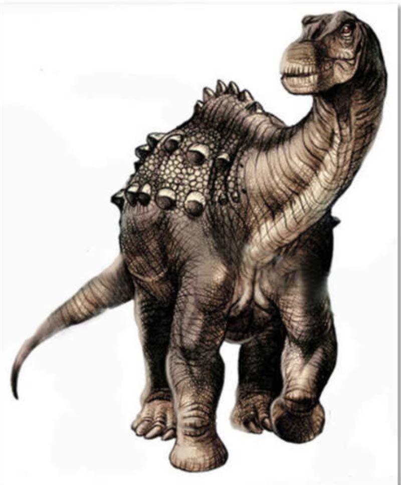 Hallan un fósil de un dinosaurio que vivió hace unos 85 millones de años