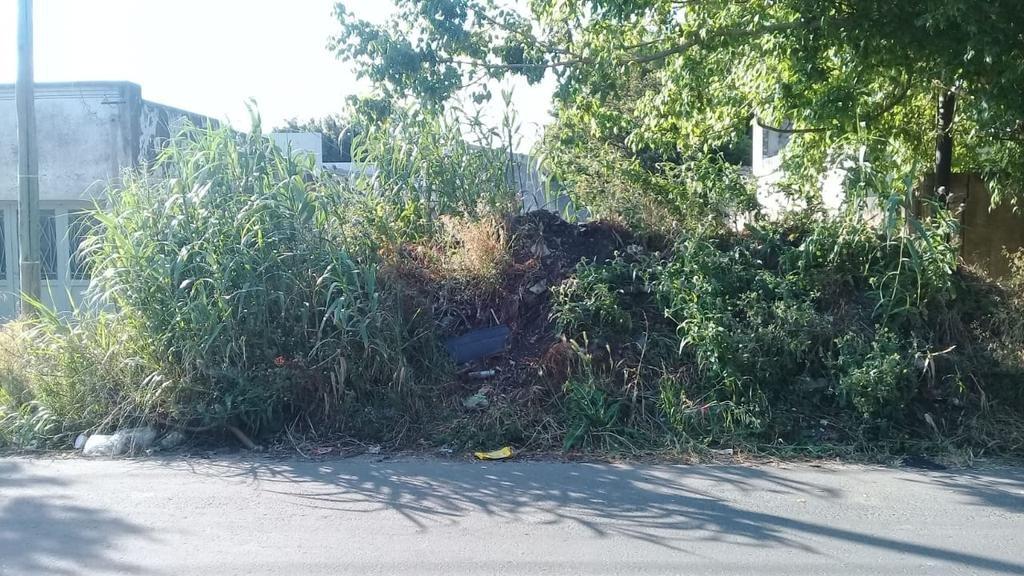 Una montaña de basura en el paisaje de 50, 139 y 140
