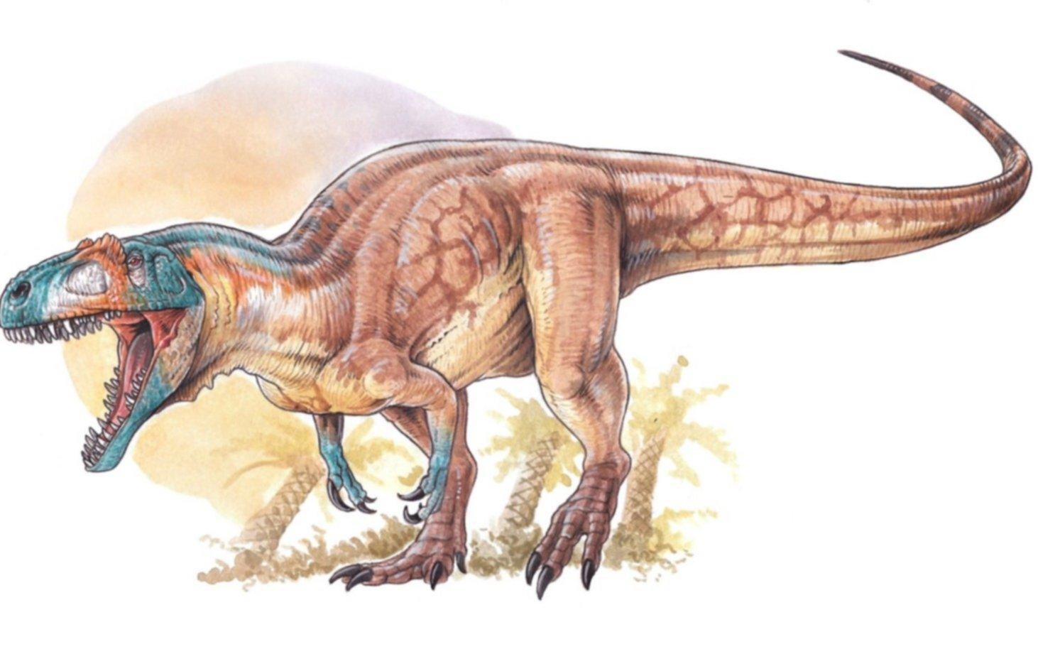 Descubren restos de dos dinosaurios en las provincias de Santa Cruz y Chubut
