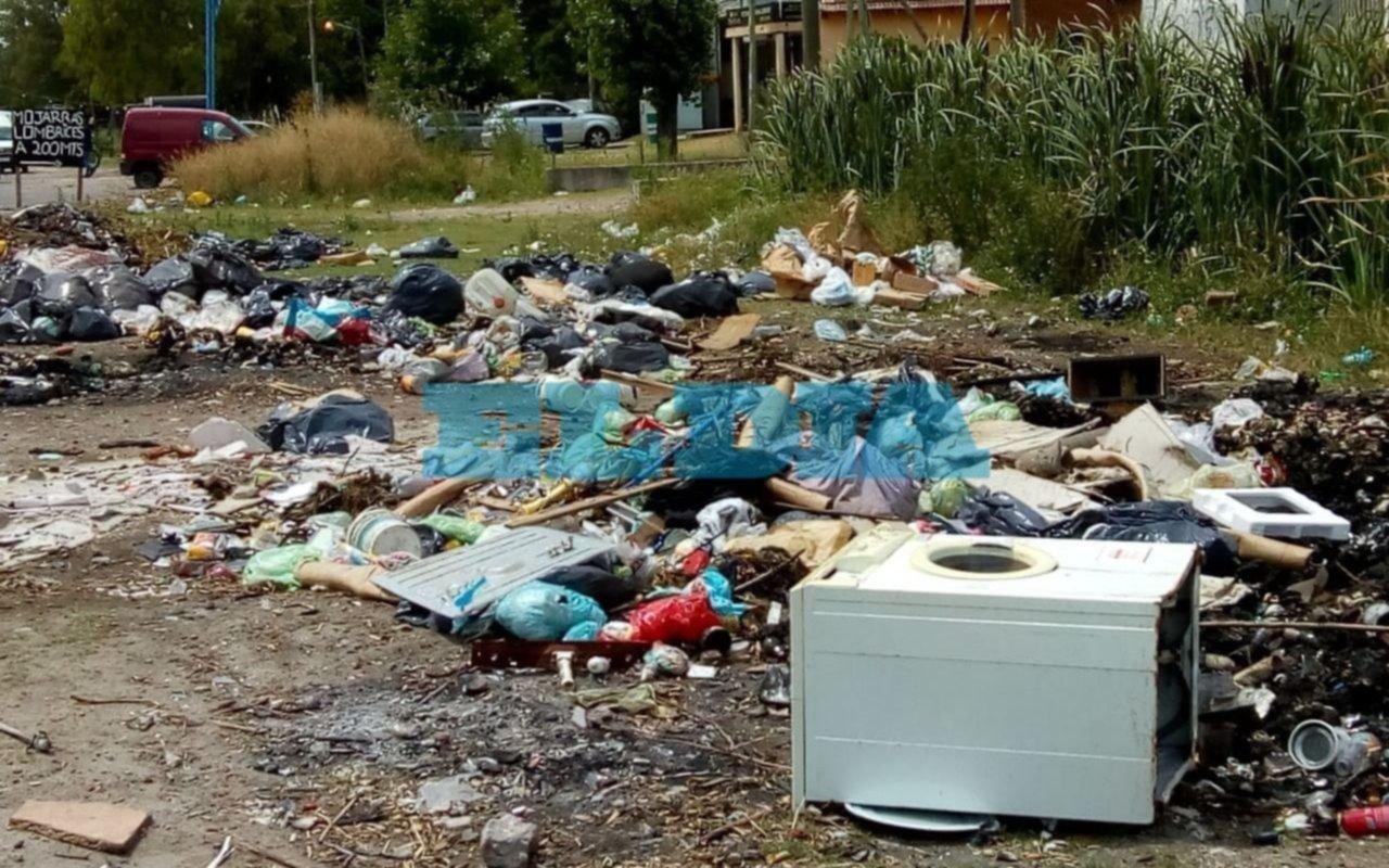 """En Villa Elvira se formó un """"basural crónico""""  y los vecinos ya sienten """"vergüenza"""""""
