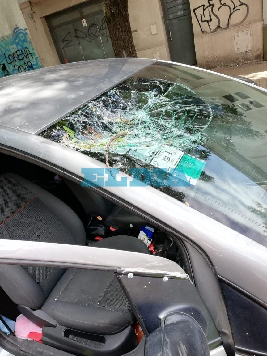 Así quedó el auto de una familia a la que se le cayó un árbol mientras transitaba por 10 y 57