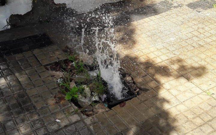 En 5 y 45, la rotura de un caño provocó una fuente de agua en plena vereda