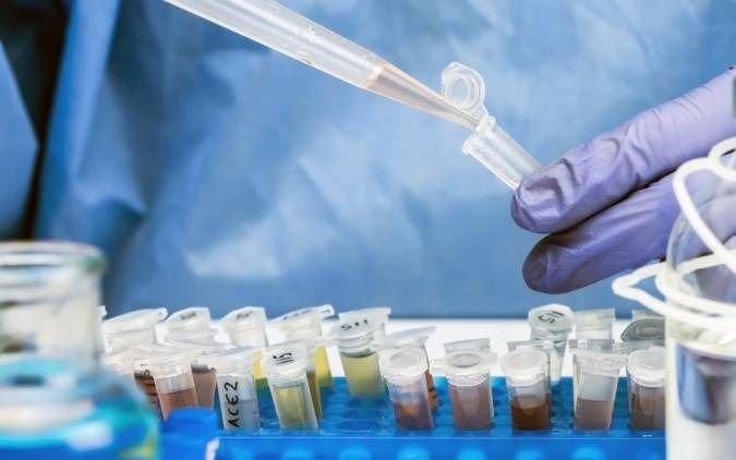 Molnupiravir, otra esperanza en la lucha contra el Covid: se administra por vía oral