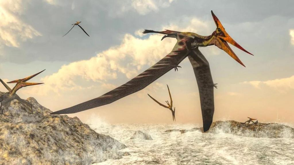Pterosaurios: descubren su misterioso origen