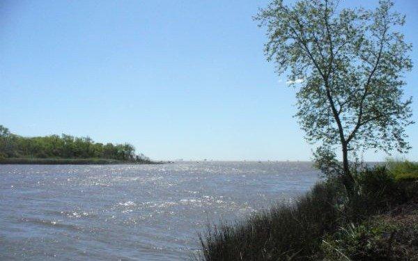 Alerta ambiental por un derrame de hidrocarburo en las costas de Berisso