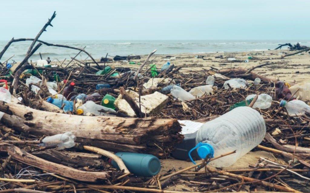 0ef7fcd9a Buscan soluciones a la contaminación con plásticos - informacion-general