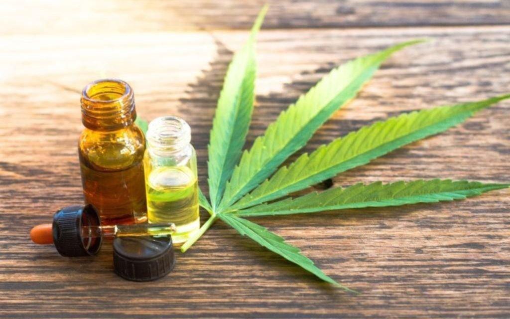 Preocupa el uso de aceite de cannabis sin prescripción