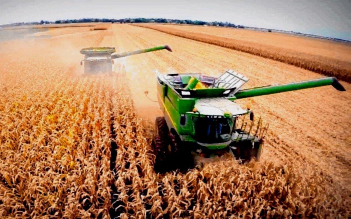 Pronostican que la cosecha récord será mayor y alcanzará las 147 millones de tn