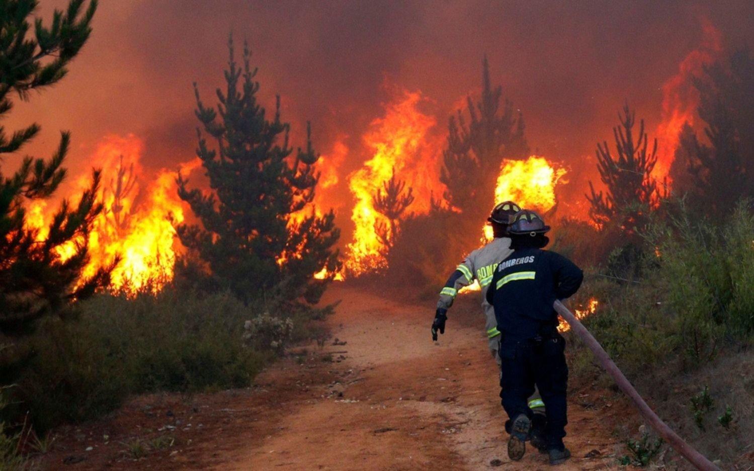¿El incendio en la Amazonía es una catástrofe brasileña o mundial?
