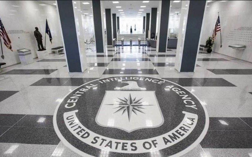 """La historia secreta de los animales """"espías"""" de la CIA"""