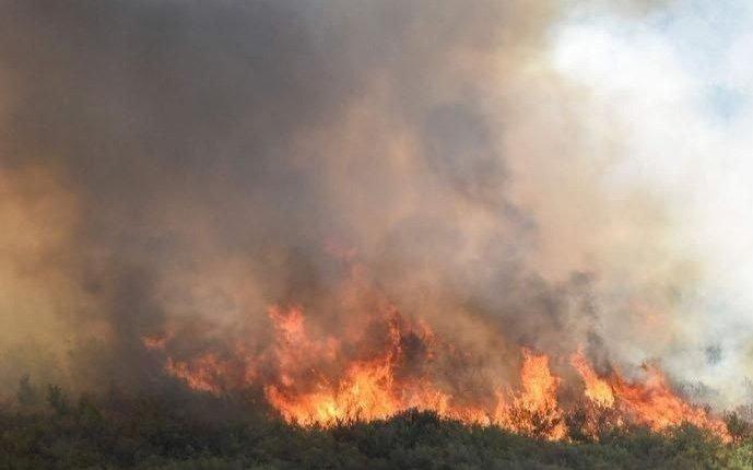 Más de 10 mil hectáreas arrasadas por el fuego     cerca de Los Ángeles